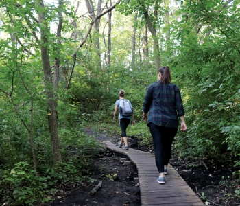 women hiking on wooded trail
